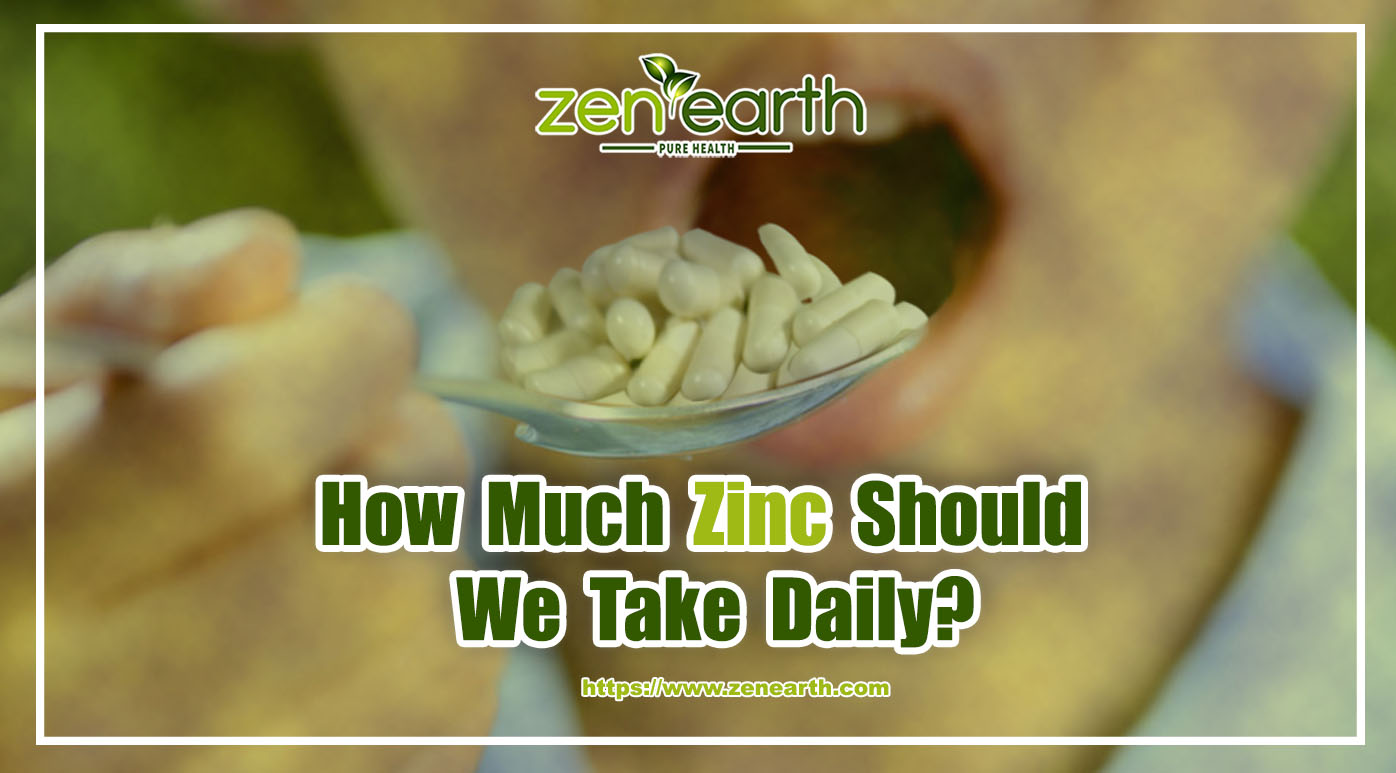 How Much Zinc Should We Take Daily
