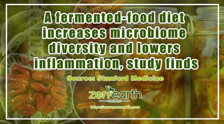 fermented food diet